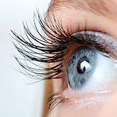 Augen / Kontaktlinsen