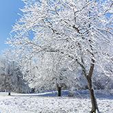 Winterprodukte