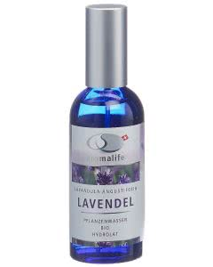 Aromalife Pflanzenwasser Lavendel Spray - 100ml