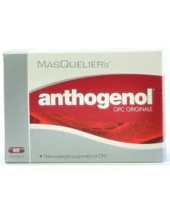 MasQueliers anthogenol OPC Originale - 60 Kaps.