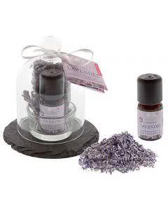 Aromalife Glasglocke Lavendel Set - 6 Stk.