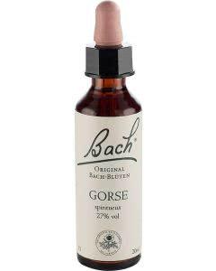 Bachblüten Original Gorse No13 - 20 ml