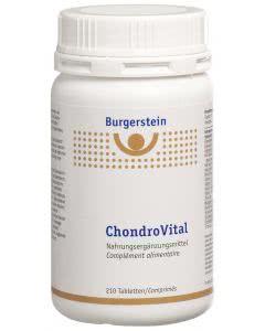 Burgerstein - ChondroVital - 210 Tabl.