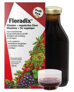 Floradix - Eisenergänzung - Saft 500ml