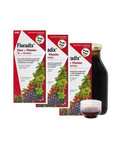 Floradix Eisenergänzung - Saft Trio-Pack - 3x500ml