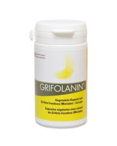 Grifolanin Vital Pilzextrakt (Grifola frondosa) - 60 Kaps.