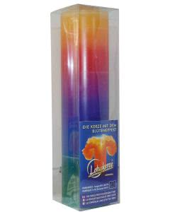 Lotuskerze mit Blüteneffekt - Regenbogen - 28cm