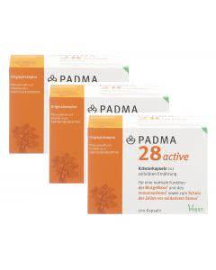 Padma 28 active -3x 200 Kaps.