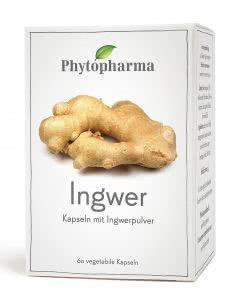 Phytopharma Ingwer - 60 Kaps.