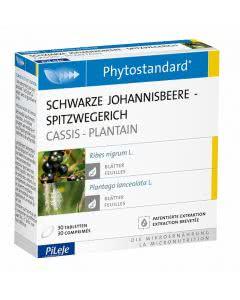 Phytostandards Pileje - Schwarze Johannisbeere und Spitzwegerich - 30 Stk.