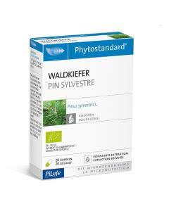 PiLeJe Phytostandard Waldkiefer Kapseln Bio - 20 Stk.