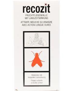 Recozit Fruchtfliegen-Klebefalle mit Langzeitwirkung